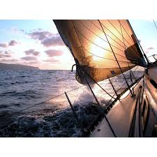 Sailing To The Sunrise Wall Mural Majestic Wall Art