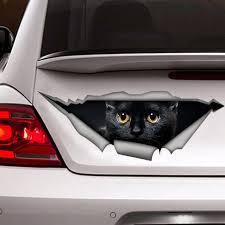Black Cat Decal Funny Sticker Cat Car Stickerblack Cat Etsy