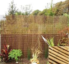 Natural Fence Peeled Reed Screening Garden Fencing Privacy Panel Roll 1 5m X 4m Ebay