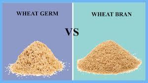 wheat germ vs wheat bran thosefoods