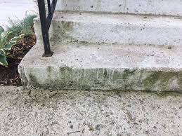 Eliminating Green Mold From Concrete Steps The Washington Post