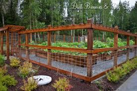 Garden Fence Ideas Diy Garden Fence Garden Layout Garden Fence