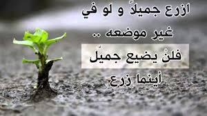 اقوال وحكم جميلة عن الحياة عبارات معبرة عن الحياة ابداع افكار