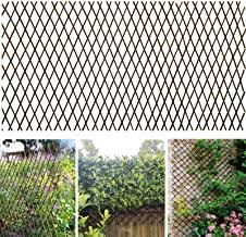 Amazon Com Trellis Fence