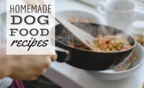 kiss kibble goodbye homemade dog food