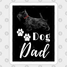 scottish terrier scottie dog dad dog