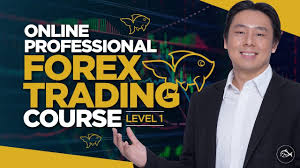 Professional Forex Trading Course Lesson 1 By Adam Khoo - YouTube