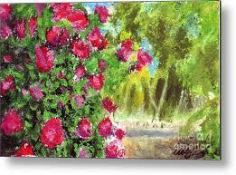 rose garden metal print by iris m gross