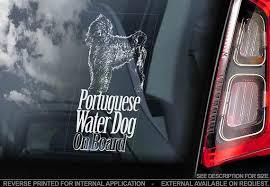 Portuguese Water Dog On Board Car Window Sticker Cao De Etsy