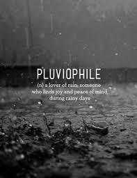 hujan petrichor dan rindu bangkusenja