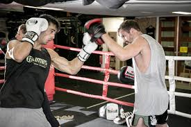 14 best boxing gyms in sydney man of many