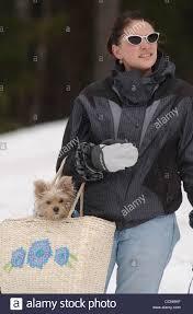 Apr 12, 2003 - Whitefish, Montana, U.S. - ABBY COLLINS and her Stock Photo  - Alamy