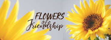 what flower stands for friendship