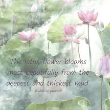 spiritual development and the lotus flower earthmonk
