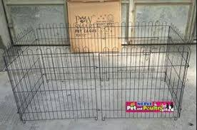Fences For Dog View All Fences For Dog Ads In Carousell Philippines