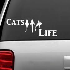 Catfish Life Fish Fishing Decal Sticker Car Truck Van Boat Tackle Box Cute And Interesting Fashion Sticker Decals Car Stickers Aliexpress