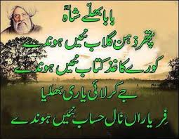 quote on friendship in urdu punjabi collection of inspiring