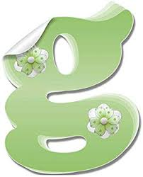 Amazon Com Girls Name Wall Decals Wall Letters Peel Stick Removable Stickers Baby S Nursery Kids Bedroom Childs Room Playroom Home Initial Vinyl Custom Alphabet Decorations Butterfly Life Letter G Green Flower Furniture