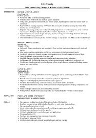 layout artist resume sles velvet jobs