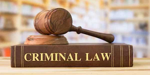 Image result for criminal law""