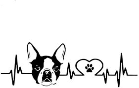Amazon Com Vylymuses Car Stickers Decals Heartbeat Boston Terrier Head Car Styling Bumper Stickers Car Body Door Window Decoration Stickers Vinyl Stickers Decals Black Automotive