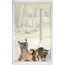 Woodland Animals Window Decal Cling Raccoon Friends Vinyl Sticker 14 Reviews 4 86 Stars What On Earth Cs1609