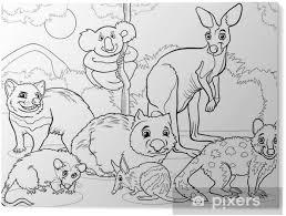 Plexiglas Print Buideldieren Dieren Cartoon Kleurplaat Pixers