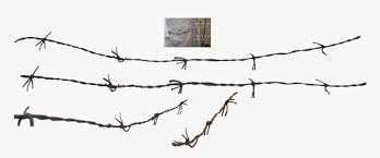Barbed Wire Fence Chain Link Fencing Barbed Wire Wire Png Transparent Png Kindpng