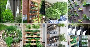 brilliant and creative diy herb gardens
