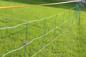 Why Buy Electric Fence Deerbusters Canada