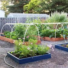 vegetable garden landscape ideas
