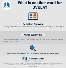 synonyms for uvula thesaurus net