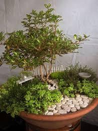 20 awesome diy fairy garden ideas on a