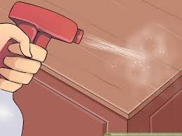 tick remedy with apple cider vinegar