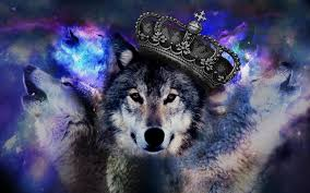 78 free wolf wallpaper and images