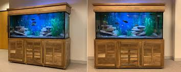 custom aquariums glass fish tanks diy