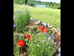 creating a wildflower garden you