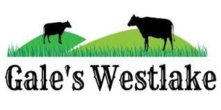 Best Electric Fence Fault Finder Tester Of 2020 Gale S Westlake