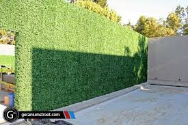 Custom Designed Artificial Boxwood Hedge Wall At A San Francisco Mansion Artificial Plants Outdoor Artificial Plants Indoor Artificial Garden Plants