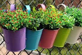 Hanging Flower Pots Balcony Shop Wowcher