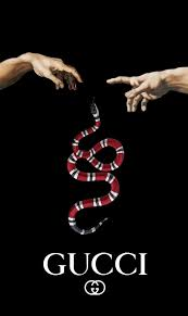 gucci snakes desktop wallpapers on