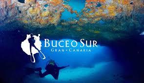 """Résultat de recherche d'images pour """"buceo sur gran canaria"""""""