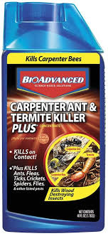 View Carpenter Ant Pest Control Cost  Pics