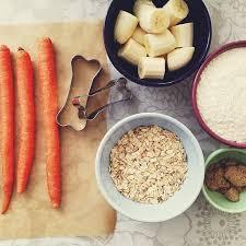 dog treat recipes healthy paws