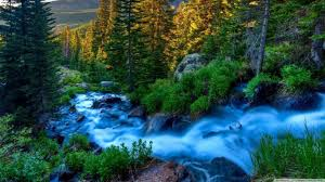 1366x768 nature wallpapers top free