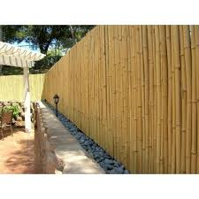 Backyard X Scapes 3 4 In D 4 Ft H X 8ft W Natural Bamboo Fence Bama Bf027 The Home Depot
