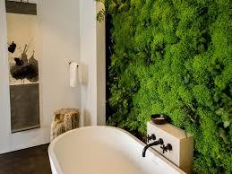 plants to grow in your bathroom
