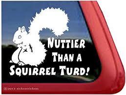 Amazon Com Nuttier Than A Squirrel Turd Squirrel Vinyl Window Decal Sticker Automotive
