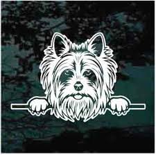 Yorkshire Terrier Peeking Car Window Decals Stickers Decal Junky