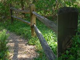 Free Images Tree Path Outdoor Fence Post Board Wood Trail Field Farm Meadow Plank Old Rail Rustic Summer Walk Rural Natural Garden Material Weathered Design Wooden Timber Woodland Locust Home Fencing